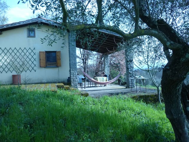 A small house in Tuscia (Lazio) - Graffignano
