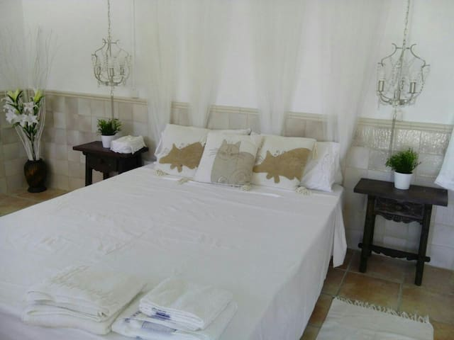 KINGSIZE STUDIO ON LOWER LEVEL OF HOME,  ANDALUCIA - Montenegral Alto - Bed & Breakfast