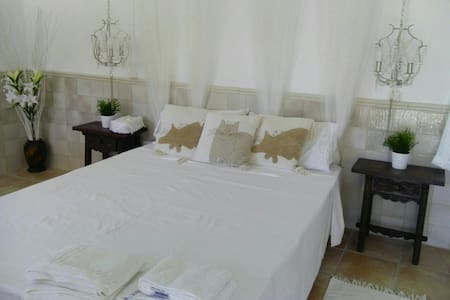 KINGSIZE STUDIO ON LOWER LEVEL OF HOME,  ANDALUCIA - Bed & Breakfast