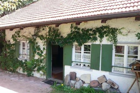 Zauberhaftes Kleinod i.Voralpenland - Bernbeuren - Hus