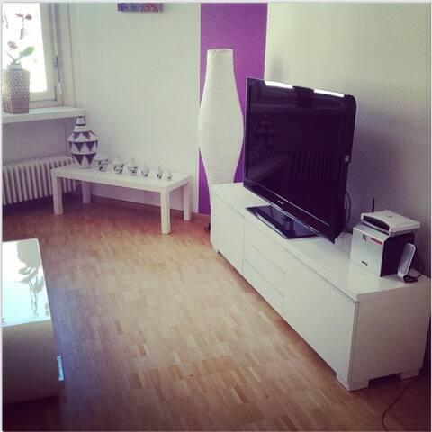 Sunny 3-room duplex apartment - Birsfelden - Apartment