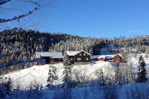 Peaceful farm located in Gol - Hallingdal