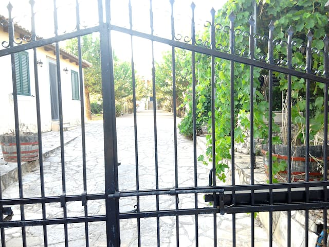 This is the farms alleyway, as seen from the main entrance. At your right you can see the well, and the grape tree above it. A beautyful place to drink your coffee.