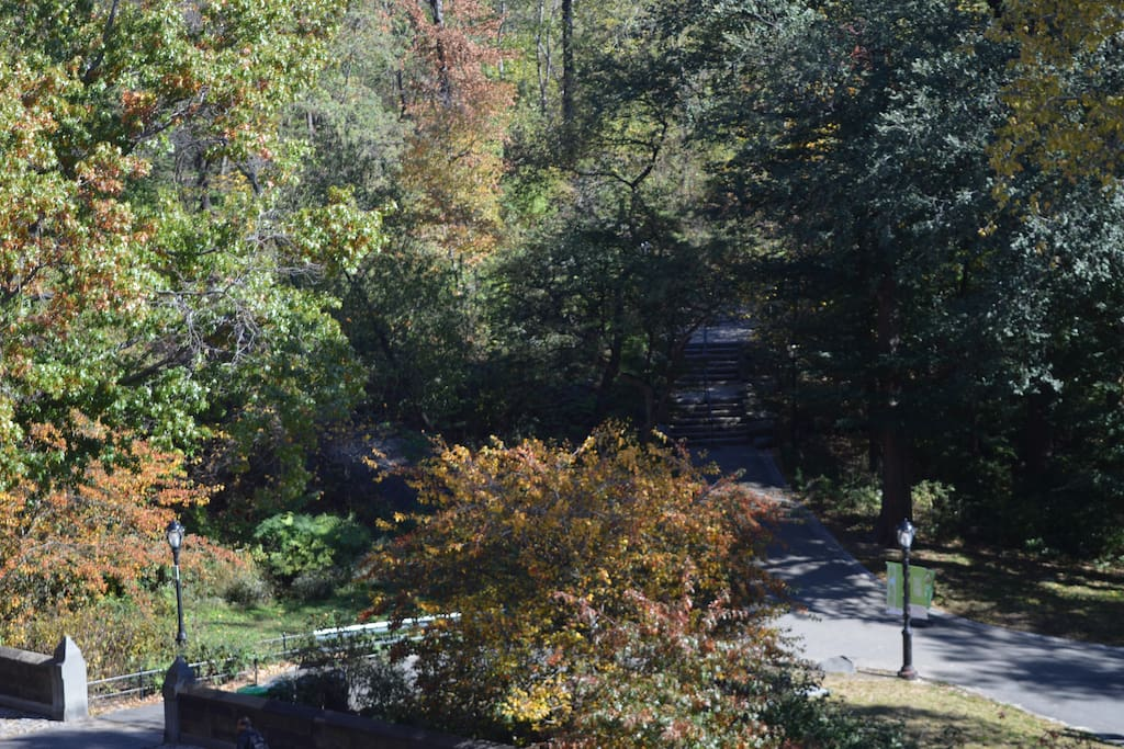 Entrance to Park on 103rd Street, taken from dining room window