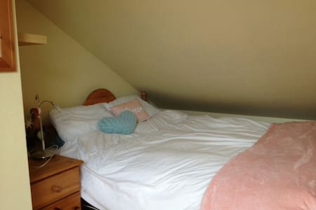 Dublin seaside en-suite attic room - Rush