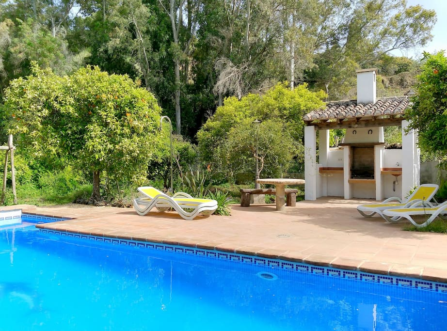 Swimming-pool and barbacue / Piscine et barbacue / Piscina y barbacoa