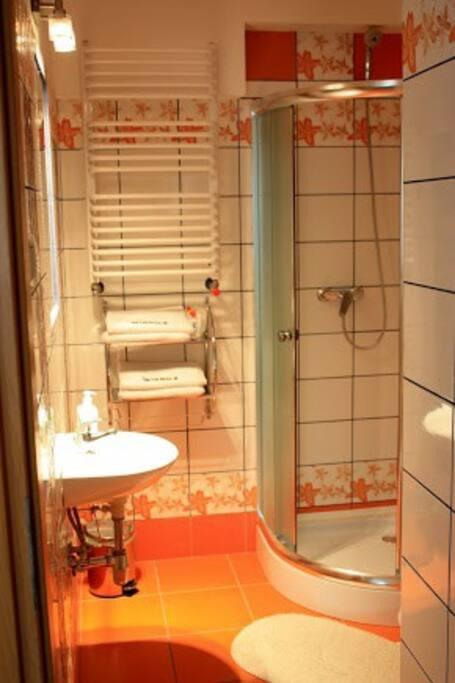 łazienka wyposażona w prysznic . Możliwość udostępnienia suszarki