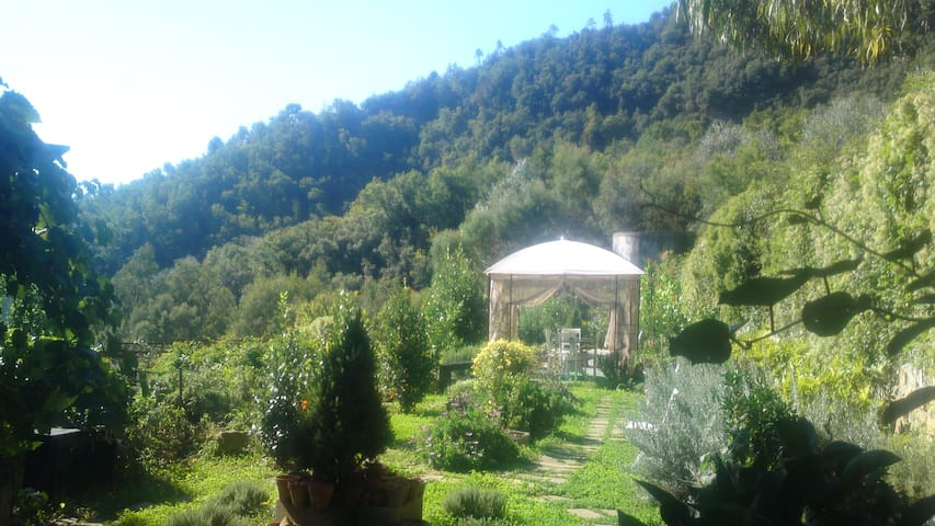Dolceacqua Group Accommodation - Dolceacqua - House