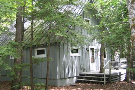 Cozy Lakefront Cabin in Freedom, ME - Freedom - Blockhütte