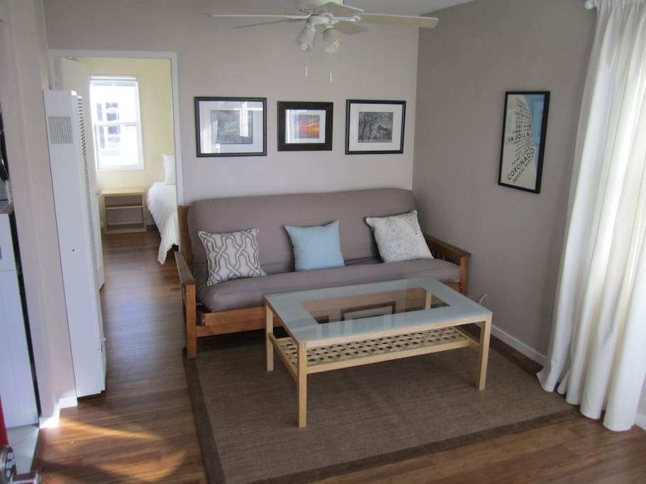 Living Room with full size memory foam futon.