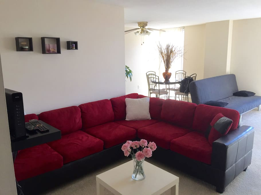 Spacious And Clean 1br 5mn Walk From Metro Apartments For Rent In Silver Spring Maryland