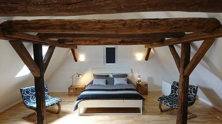 Cozy 140 m2 house close to Basel