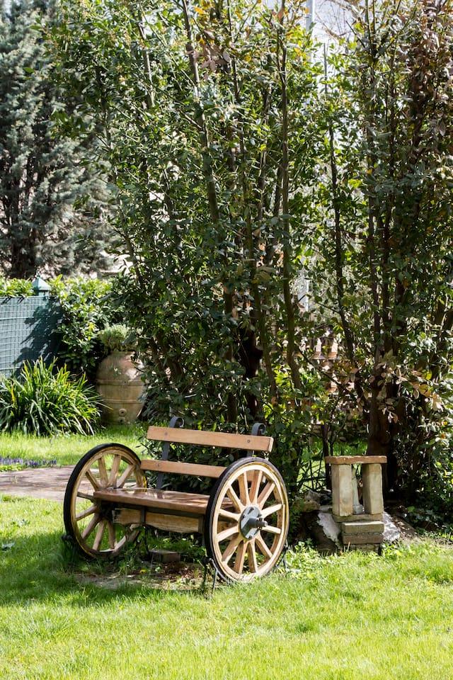 L'alloro nel giardino