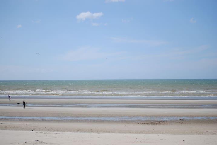 Joli appartement sur la plage - Dunkirk - Apartemen