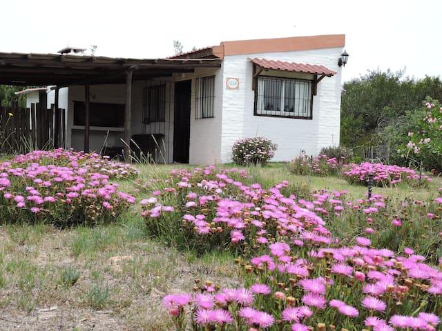 Casa en zona de José Ignacio - Maldonado - Hus