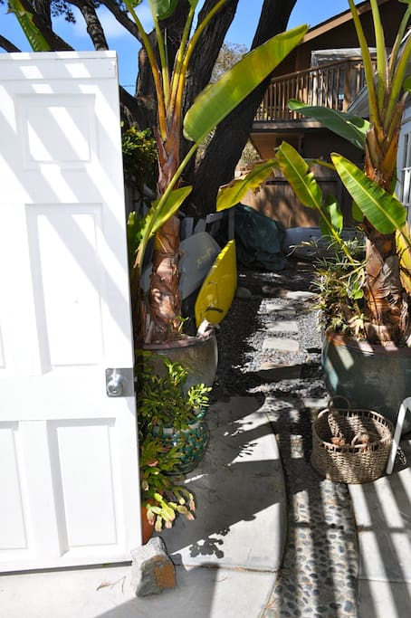 Private courtyard with surfboards, SUP, and kayaks.