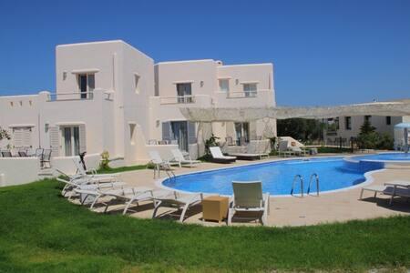 See Naxos Relaxing Villa with pool9 - Naxos - Villa