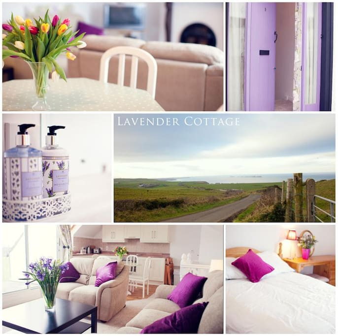 Lavender Cottage: Lavender Cottage Giants Causeway