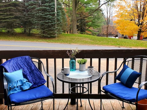 Water View & Excellent WiFi!  Adirondack Cottage