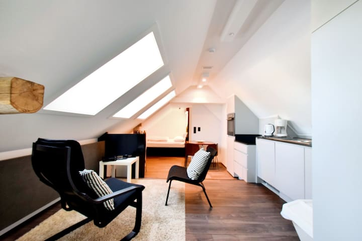 Modern and cozy studio in a former coach house