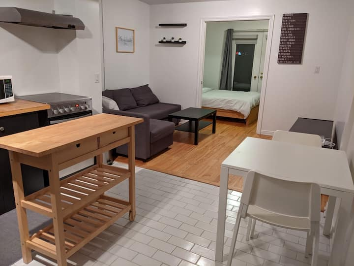 Entire guest suite-Private 1 bedroom in Centretown