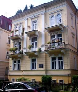 Cozy flat close to the forest - Mariánské Lázně