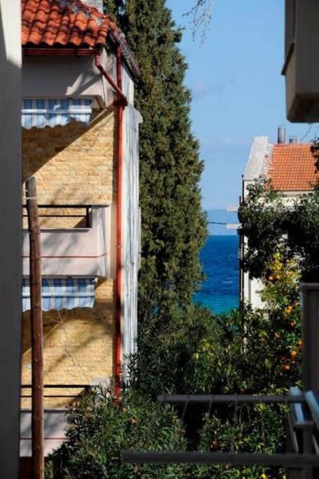 Вид балкона. Апельсины и море.