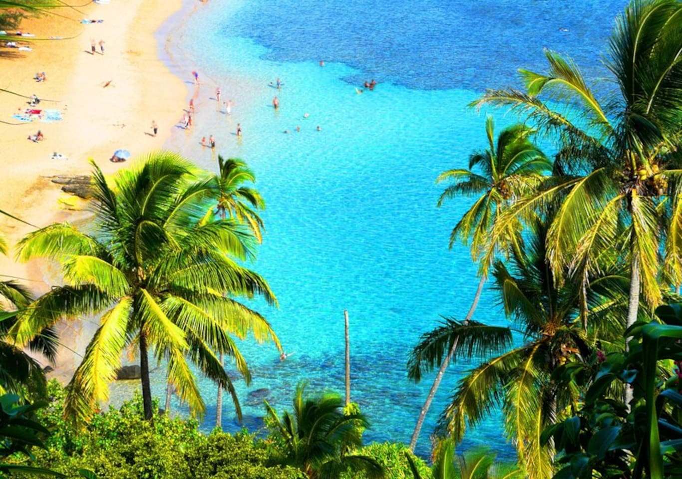 Dip your toes in the golden sands of the beautiful Kamaole beach across from your condo!