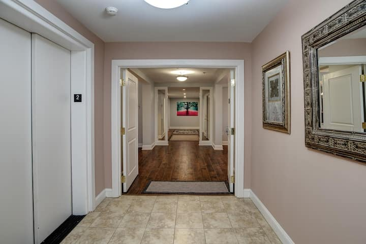 Newly Renovated Condo in the heart of Biltmore Village #201