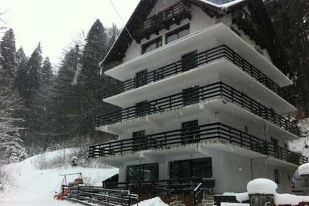 Beautiful Villa In Predeal - Predeal
