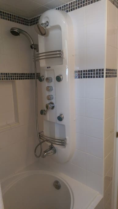 Enjoy the deep bathtub and spa shower (shower jets, one handheld shower head and one regular).