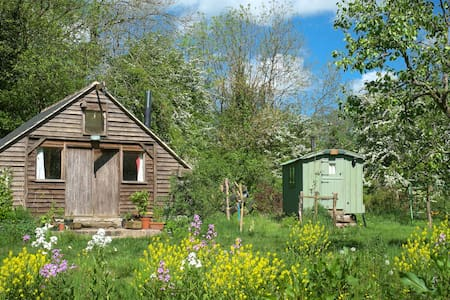 Rustic, charming cabin in woodland - Somerset