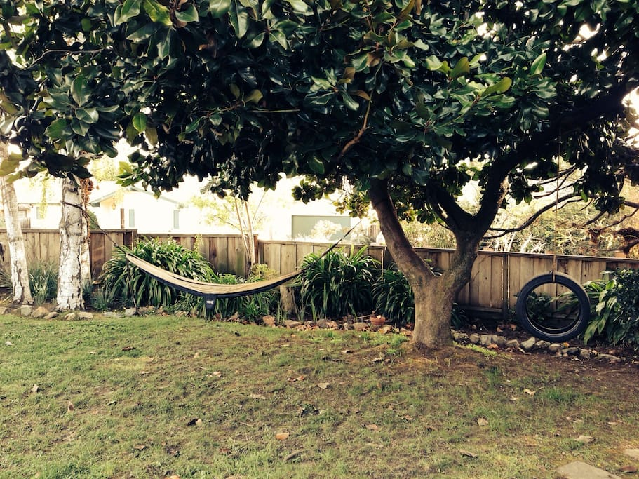 Front area of large  yard with hammock :)
