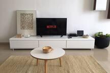 Smart Tv + NETFLIX
