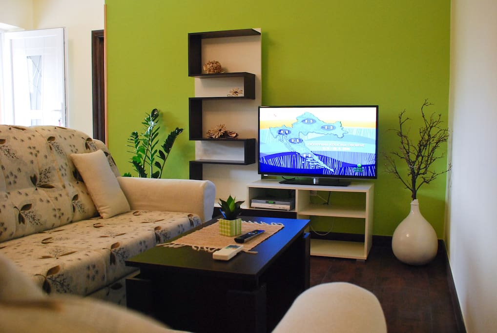 Living room with flat satellite TV