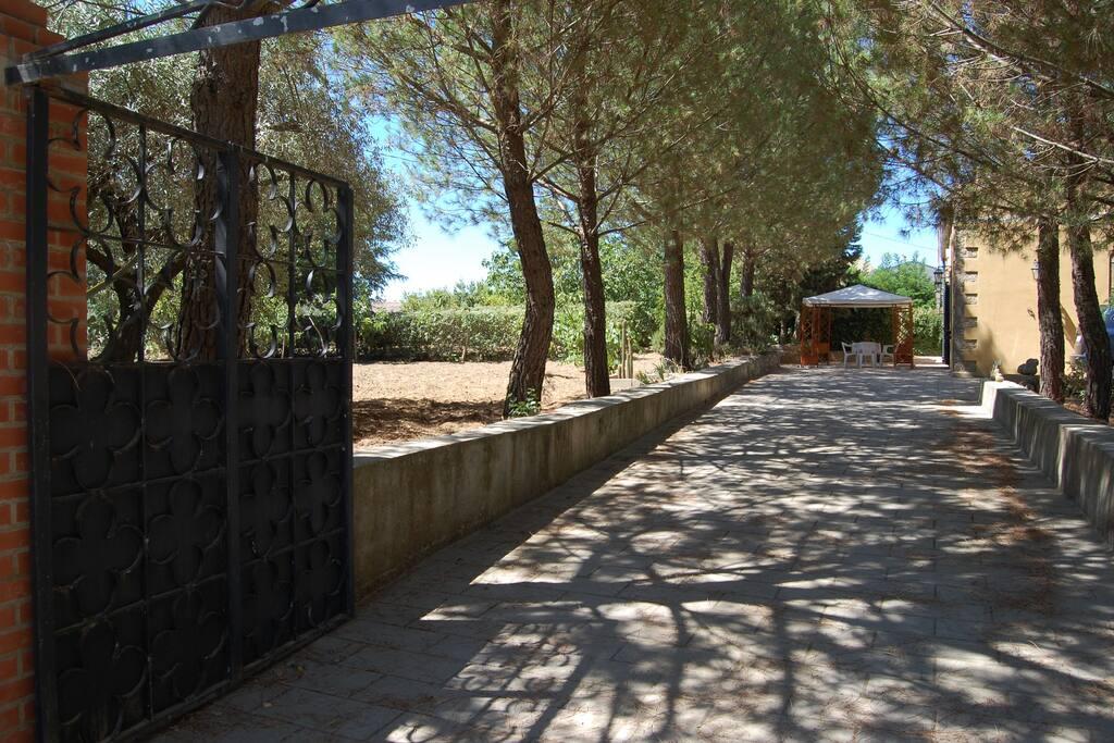 Vialetto di accesso alla proprietà.