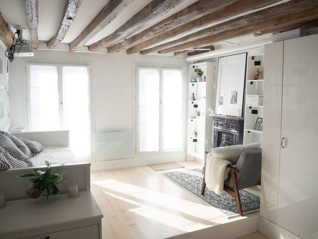 Nice studio with balcony near the Louvre