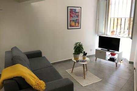 Beau studio refait à neuf - Centre ville