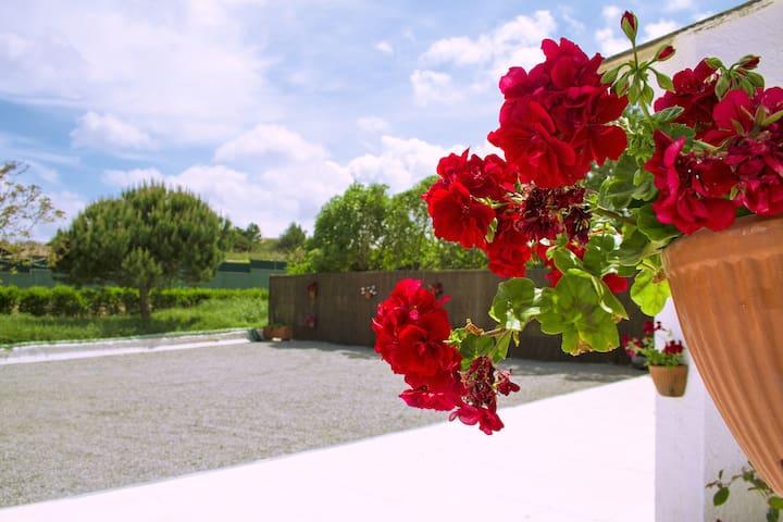 Casal Do Góis - Guest House