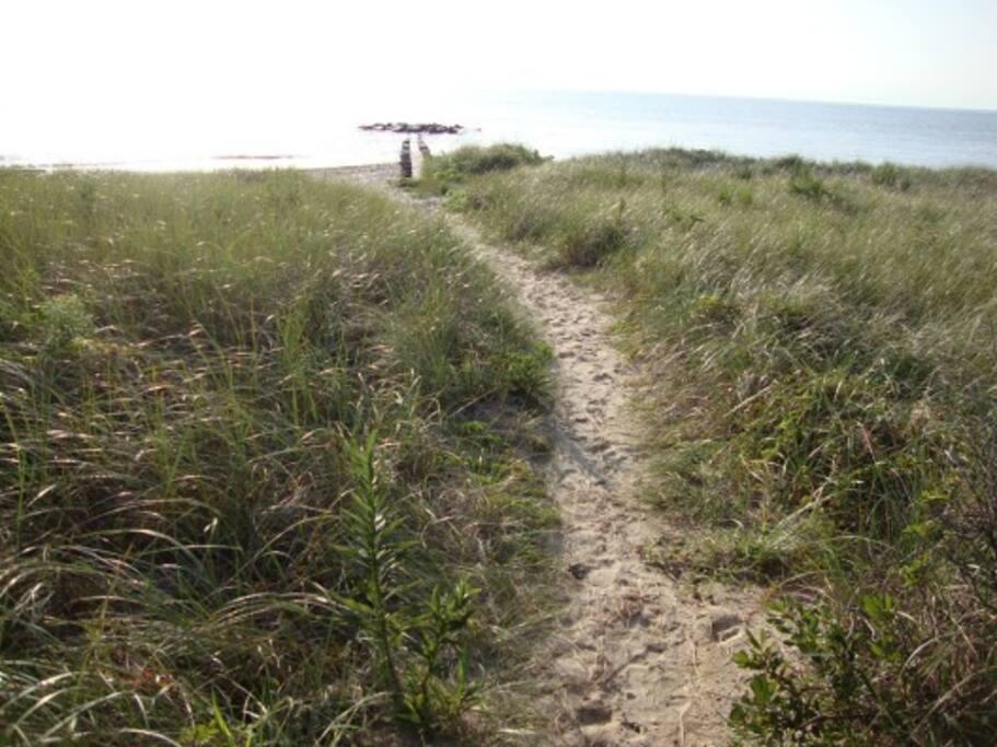 Walk towards our beach