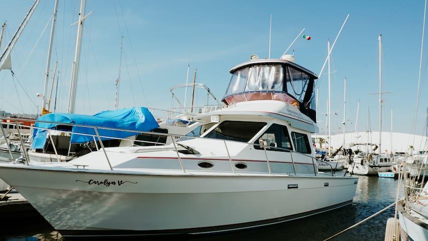 Yate Carolyn V yacht disponible para la renta