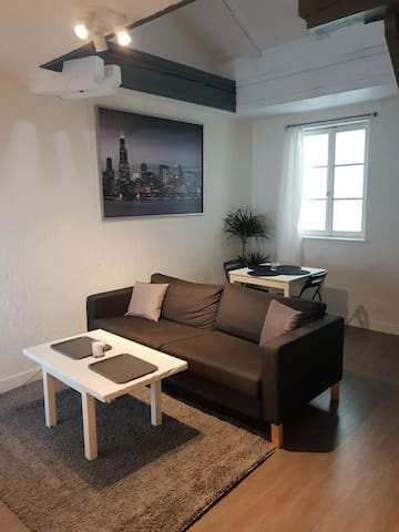 Duplex cosy au coeur de Metz.