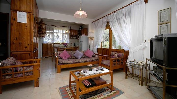 avşa adasındabahçeli müstakil villa
