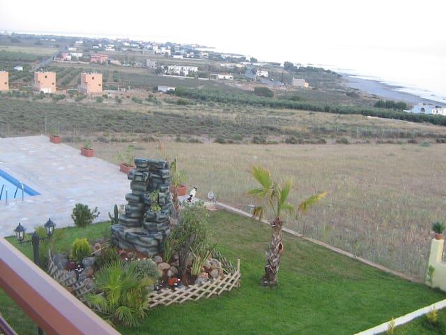 Garden and fountain view
