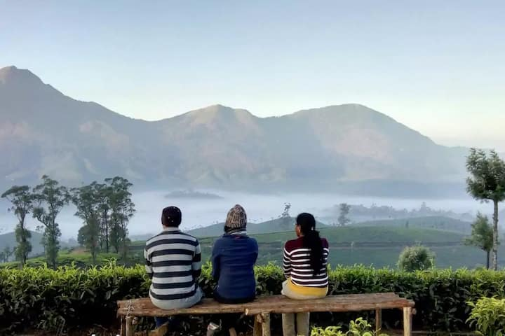 Tea Factory Experience with Tent Camping @ Munnar