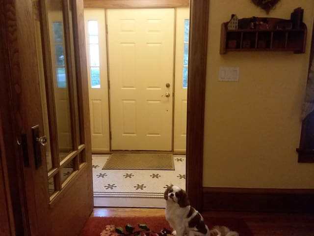 entrance to the home from front door featuring Pawla the dog
