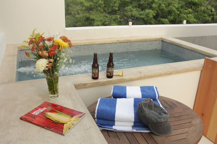 PENTHOUSE WITH PRIVATE POOL 5 MINUTES TO BEACH