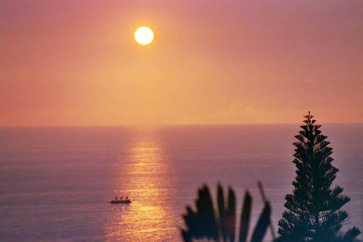 Ocean View Pool 5 bdrms 4.5 Bth Hot Tub Beach Near - Kailua-Kona - House