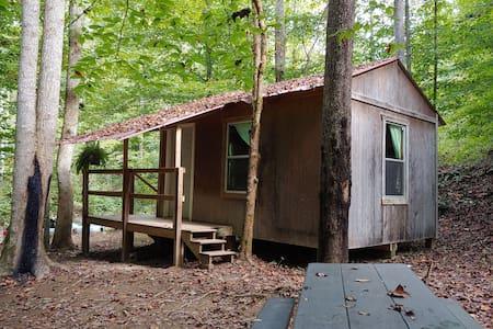 Momma Bear Cabin w/ secluded site