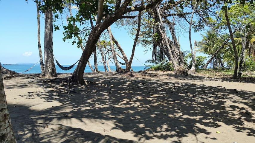 Cabinas palmera rincón san josesito - Bahía Drake - Cabin